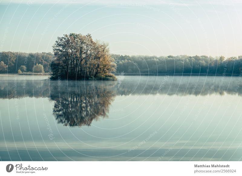 Sky Nature Blue Water Landscape Tree Loneliness Calm Autumn Environment Lake Contentment Fog Joie de vivre (Vitality) Beautiful weather Lakeside