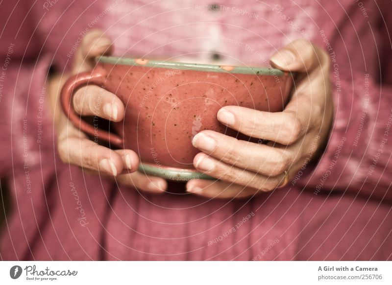 warming up Lifestyle Luxury Living or residing Human being Feminine Woman Adults Hand Fingers 1 Cup Pot Happiness Uniqueness Warmth Pink To hold on Clay