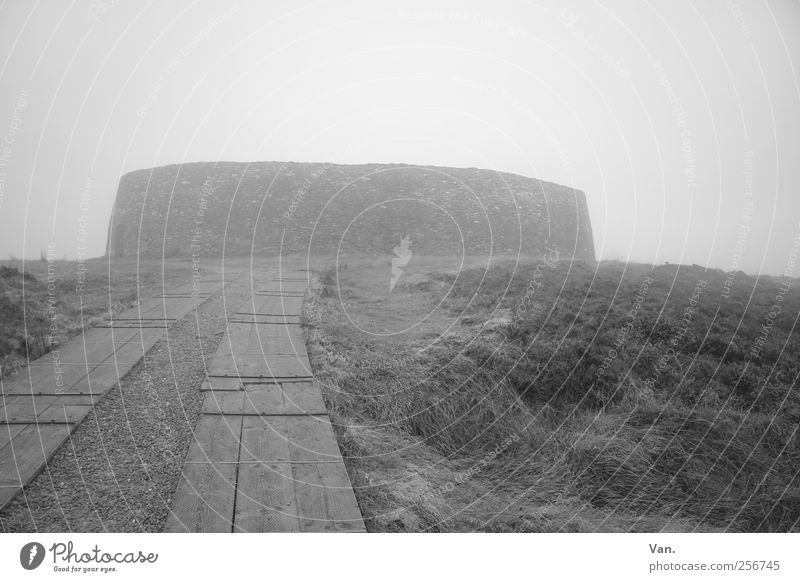 Grianán of Aileach Environment Sky Autumn Bad weather Fog Plant Grass Meadow Ireland Ruin Manmade structures Fortress Wall (barrier) Wall (building)