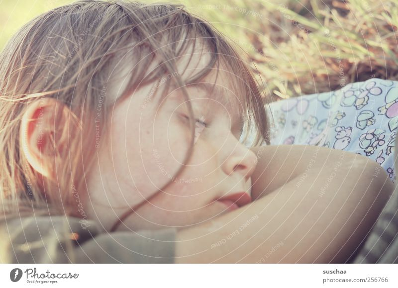 Human being Child Girl Summer Face Relaxation Grass Head Hair and hairstyles Infancy Arm Skin Mouth Nose Sleep Ear