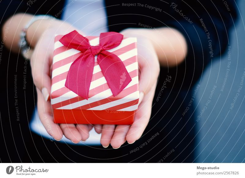 female hands holding a small gift box, present. Woman Human being Christmas & Advent Beautiful Hand Red Adults Love Happy Feasts & Celebrations Design