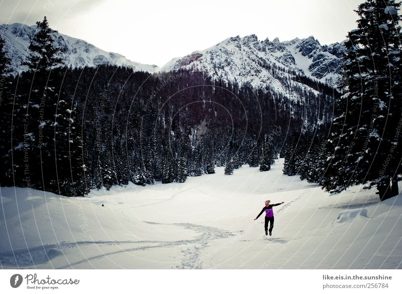 Human being Vacation & Travel Winter Relaxation Life Snow Landscape Mountain Jump Leisure and hobbies Hiking Trip Adventure Tourism Alps Peak