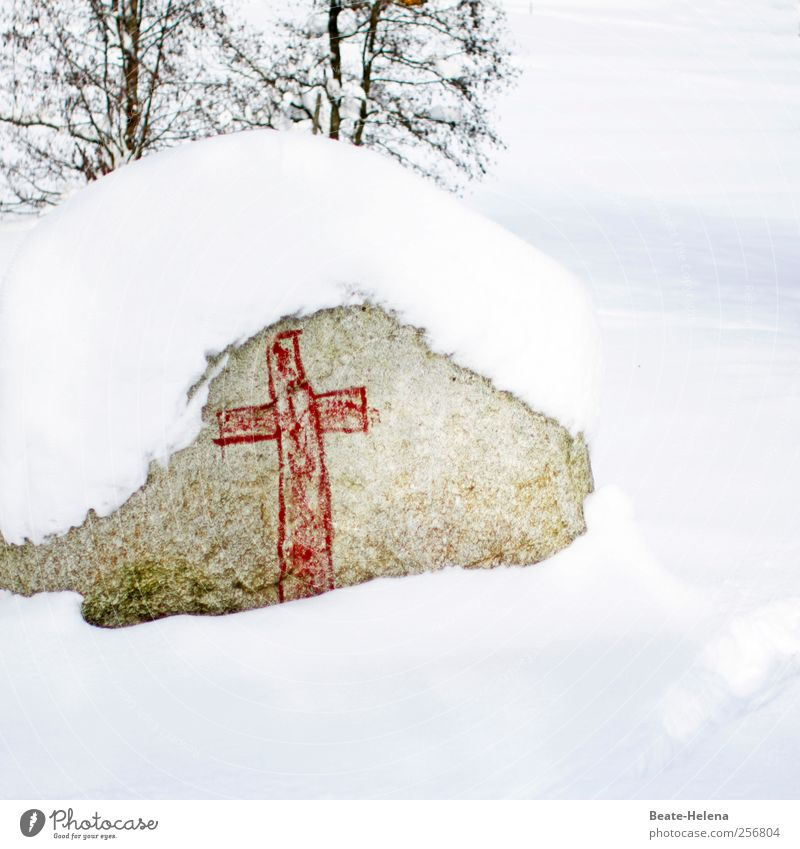 Nature White Red Winter Calm Death Cold Snow Landscape Graffiti Gray Stone Park Ice Hiking Sleep