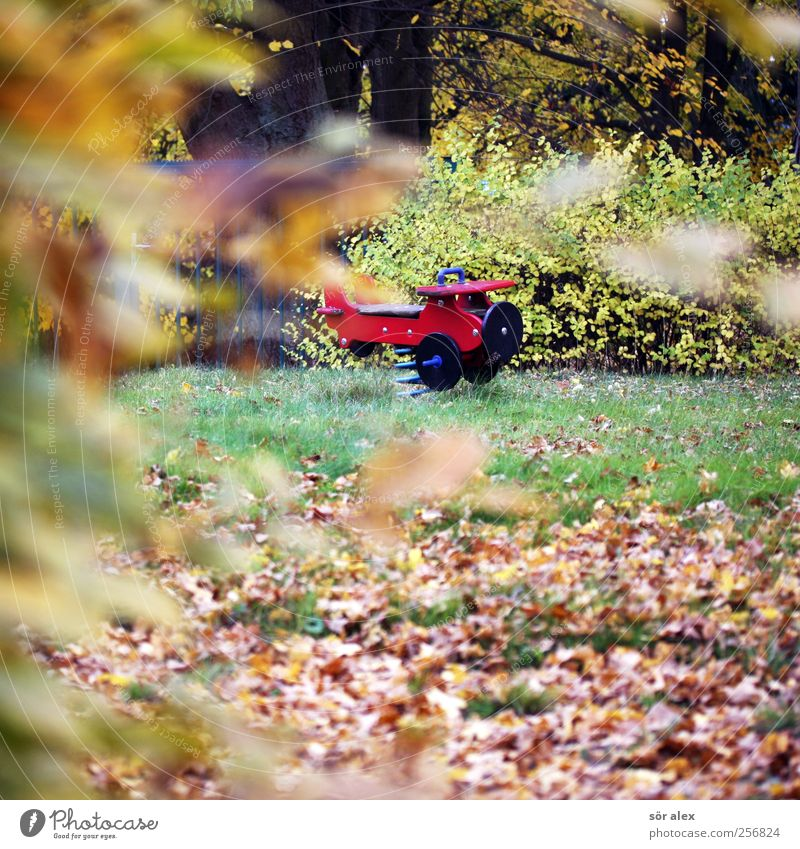 Off on holiday Environment Nature Autumn Tree Grass Leaf Autumn leaves Village Playground Wood Idyll November Airplane Decline Transience Calm Loneliness Meadow