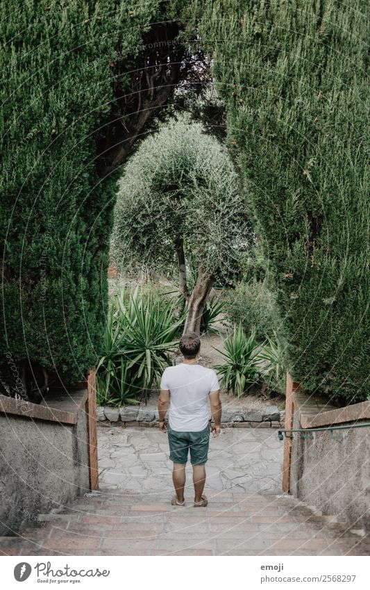 Cannes Masculine Young man Youth (Young adults) Adults 1 Human being 18 - 30 years Plant Tree Park Stairs Natural Green Colour photo Exterior shot Day