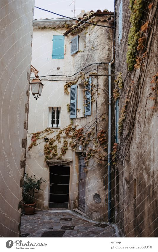 ramatuelle Town House (Residential Structure) Wall (barrier) Wall (building) Facade Window Door Old Poverty Cote d'Azur Alley Colour photo Exterior shot