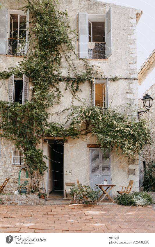 Antibes House (Residential Structure) Dream house Ivy Village Detached house Wall (barrier) Wall (building) Facade Window Door Authentic Mediterranean