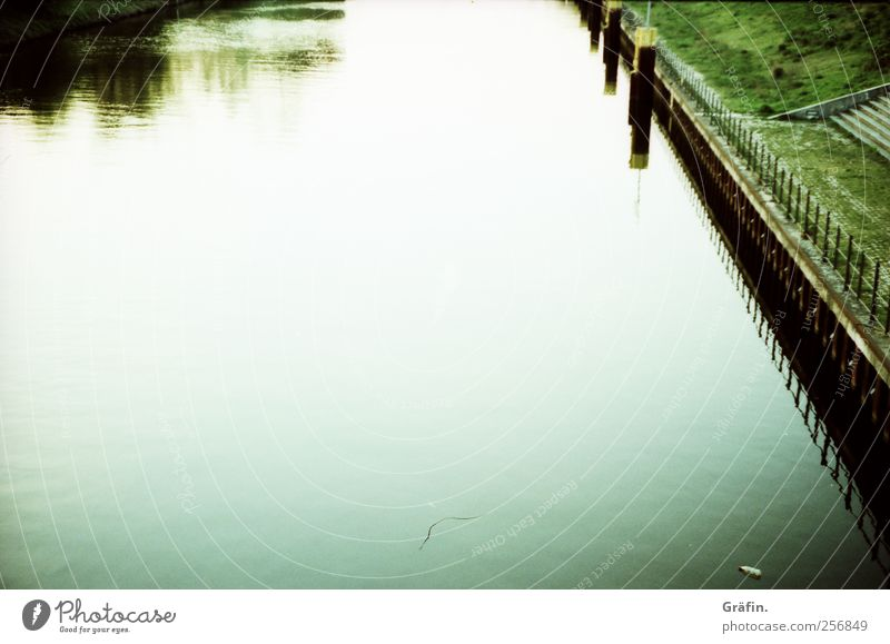 Water Green White Calm Loneliness Autumn Meadow Romance River bank Channel