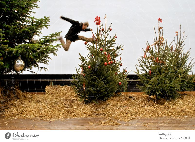 Human being Nature Christmas & Advent Tree Joy Environment Feasts & Celebrations Jump Masculine Culture Political movements Symbols and metaphors Pants