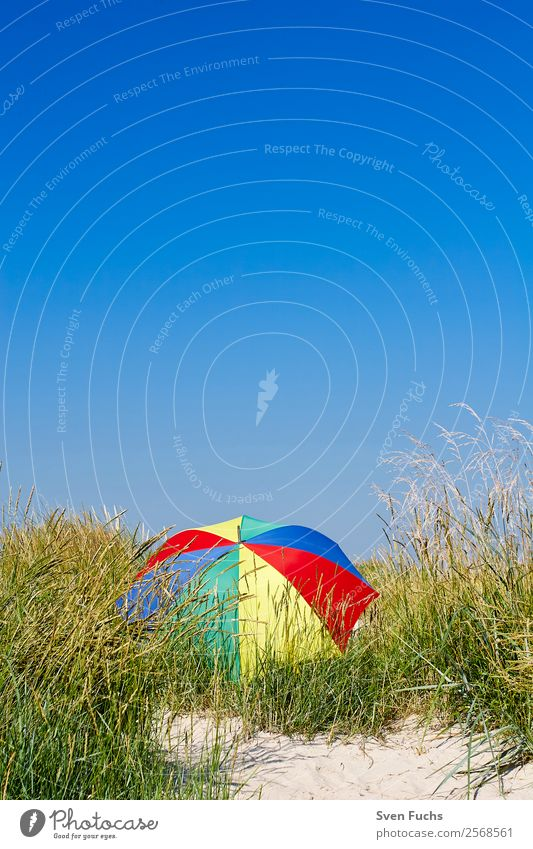 Colourful parasol in a dune Beautiful Relaxation Calm Vacation & Travel Tourism Summer Sun Beach Ocean Island Nature Landscape Sand Cloudless sky