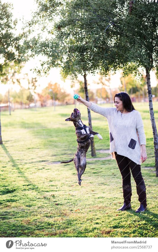 dog jumping and playing with a young woman Woman Nature Dog Beautiful Green Hand Animal Joy Lifestyle Adults Happy Grass Playing Friendship Jump Park