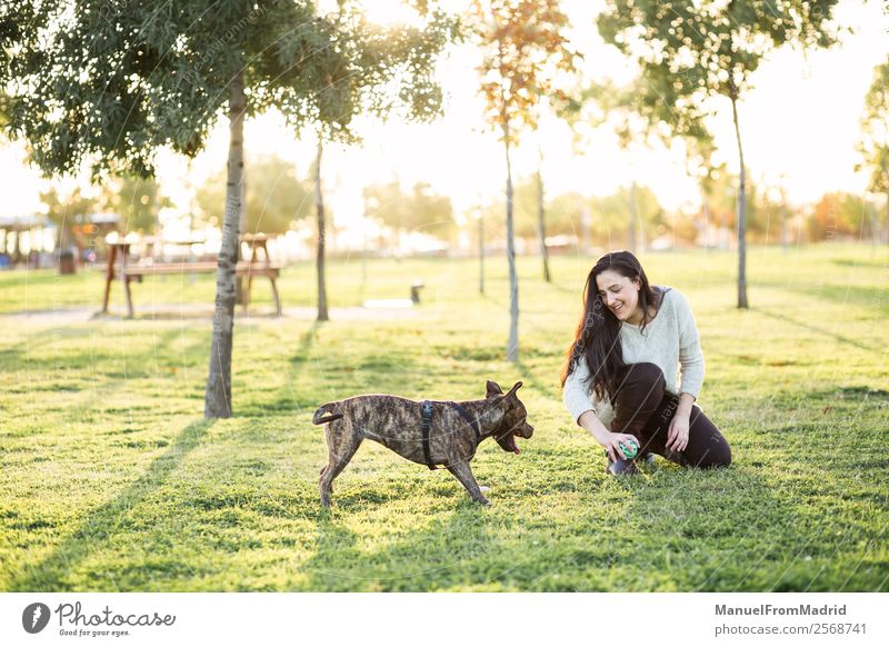 young woman playing with her dog Woman Nature Dog Beautiful Green Animal Joy Lifestyle Adults Happy Grass Freedom Together Friendship Park Smiling