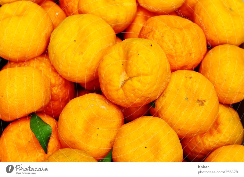 Fresh orange fruits Colour Leaf Yellow Background picture Food Fruit Vegetarian diet Vitamin Juicy Juice Tropical Organic Sour Tangerine Tropical fruits