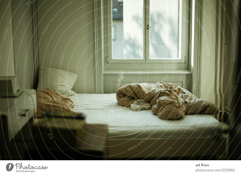 Old Window Room Leisure and hobbies Design Bed Furniture Blanket Bedroom Duvet Period apartment
