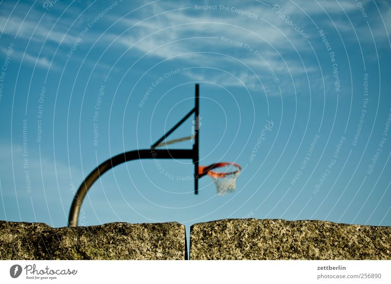 basketball Leisure and hobbies Playing Sports Ball sports Sporting Complex Autumn Good Beautiful Basketball Sky youthful texfreiraum wallroth Colour photo