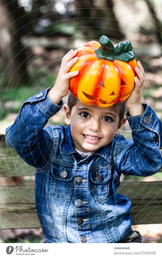 Little boy seated on a bench with a pumpkin on Halloween Child Human being Nature Plant Beautiful Joy Forest Black Lifestyle Autumn Funny Emotions Happy