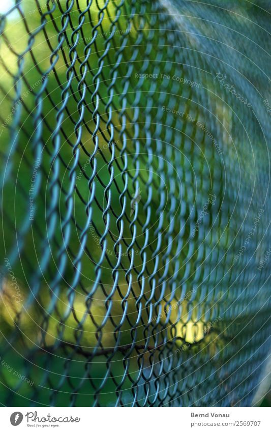 Always the same scam Sports Sporting Complex Football pitch Cold Wire netting fence Fence Barrier Pattern Protection Green Tree Metal Warmth Bend Colour photo