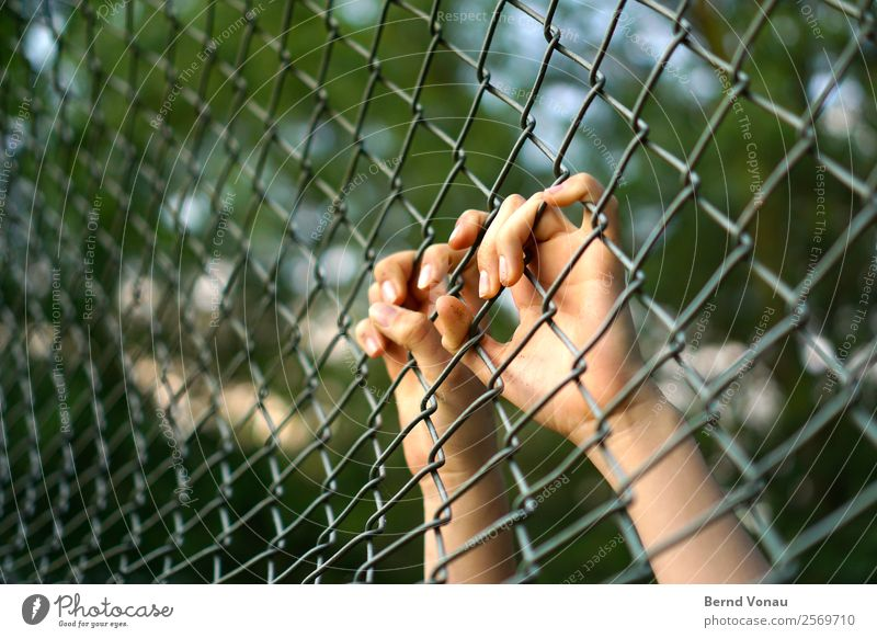 Hands separated from the terrain Human being Feminine Young woman Youth (Young adults) Fingers 1 Nature Bright Wire netting fence Captured Escape Require