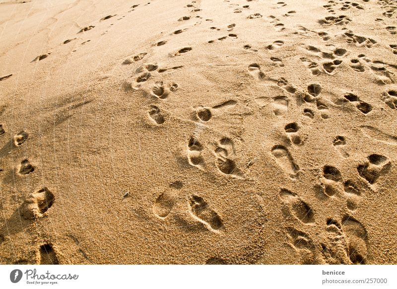 Vacation & Travel Beach Movement Sand Background picture Going Footprint Chaos Sandy beach