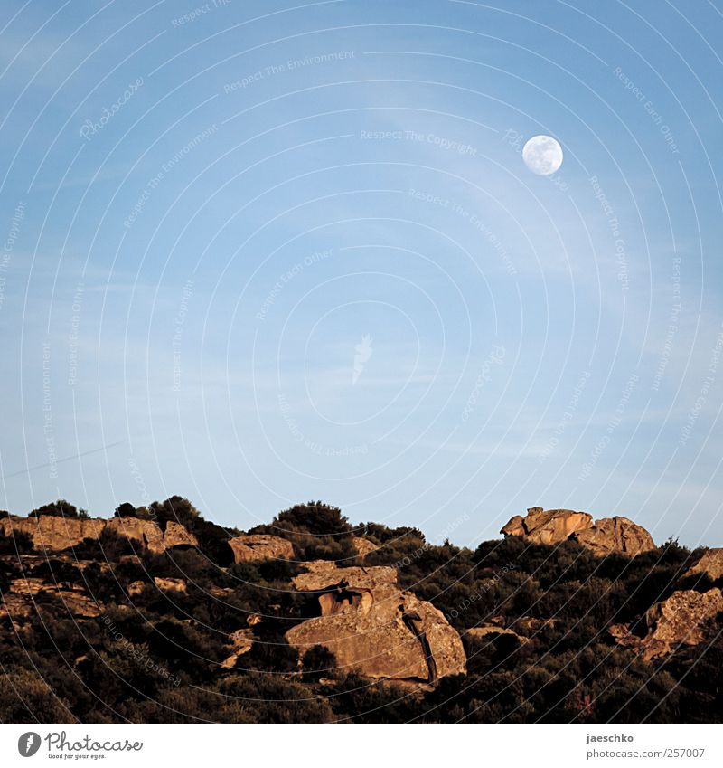 lunar landscape Environment Nature Landscape Earth Cloudless sky Moon Full  moon Beautiful weather Hill Rock Stone Exceptional Gloomy Sparse Lunar landscape