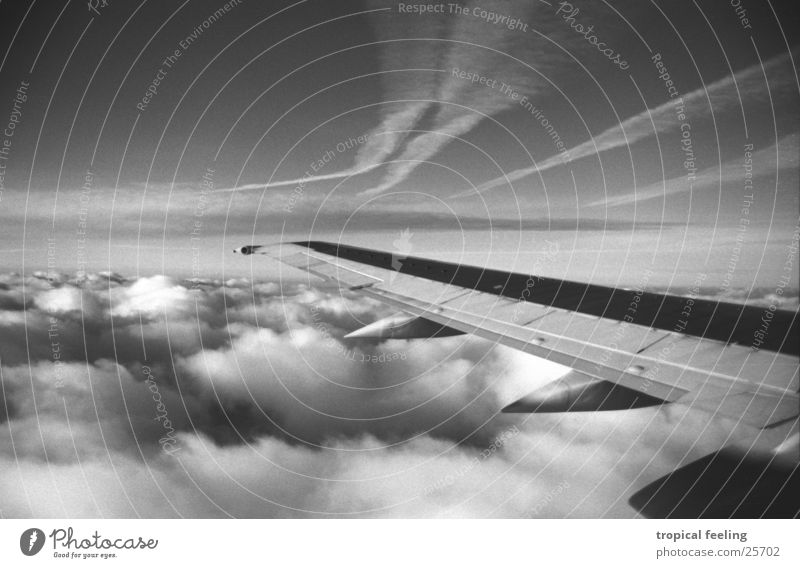 air Wing Clouds Air Soft Aviation Black & white photo Sky