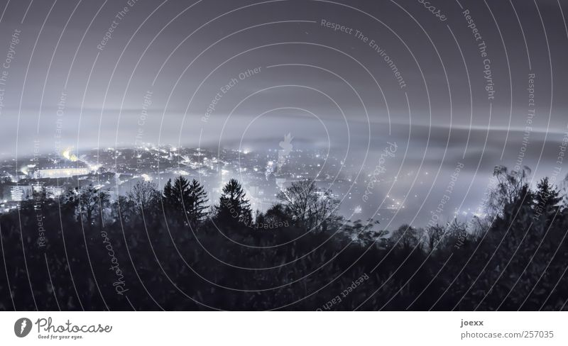 Sky White City Black Forest Cold Dark Gray Lighting Fog Energy Illuminate Skyline Night sky Outskirts