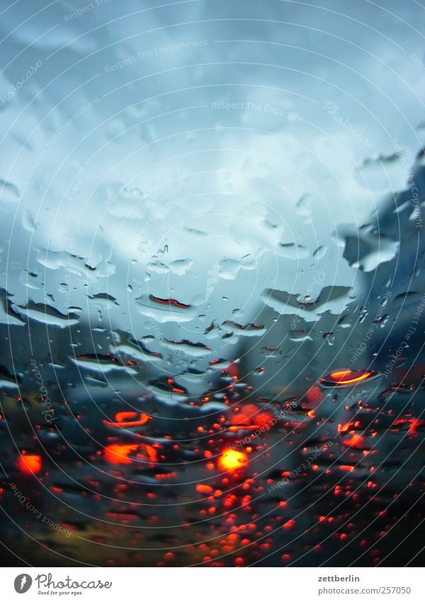 rain Environment Water Drops of water Autumn Climate Climate change Weather Rain Transport Rush hour Road traffic Motoring Street Car Wet Fatigue Pain