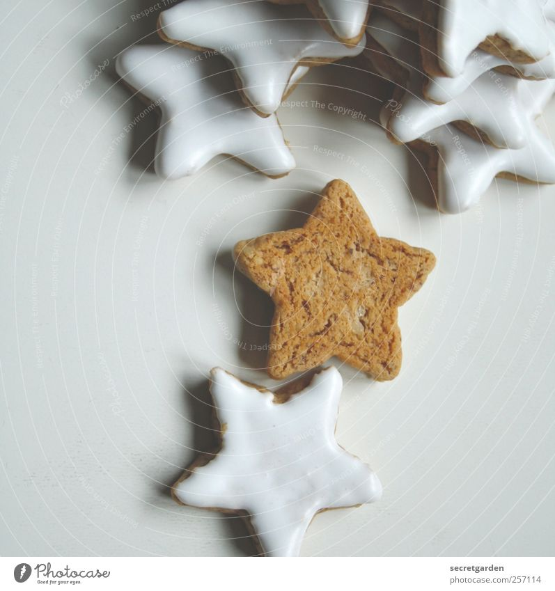 topless. Food Dough Baked goods Candy Nutrition Christmas & Advent Fragrance Sharp-edged Bright Brown White Star (Symbol) glaze Loneliness Error Subsoil