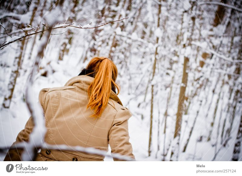 Human being Nature Youth (Young adults) Tree Young woman Winter 18 - 30 years Forest Adults Snow Feminine Hair and hairstyles Freedom Leisure and hobbies Back