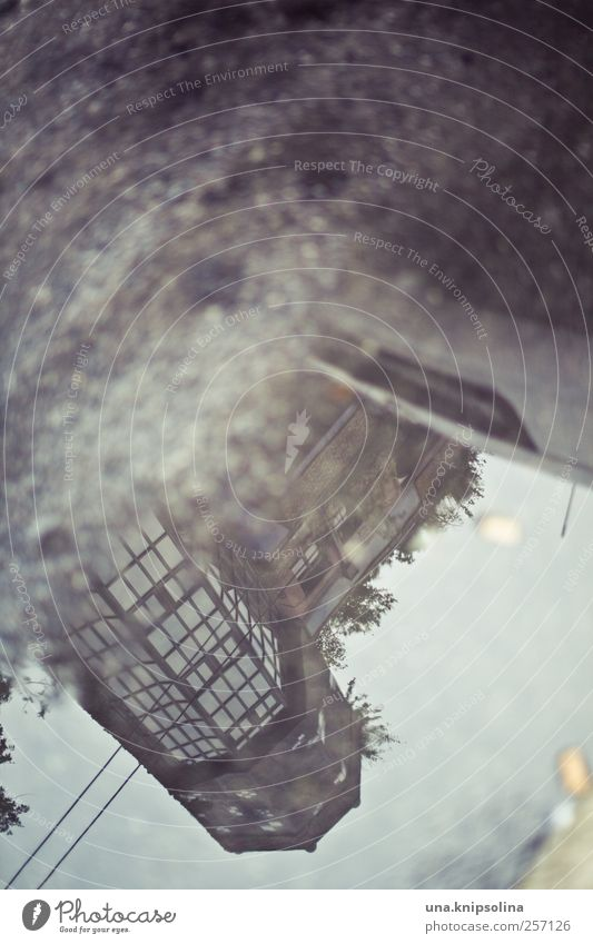 mirror image Art Work of art Environment Autumn Rain Vienna Austria Town Downtown Deserted Manmade structures Building Architecture Facade Tourist Attraction