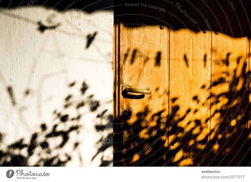 Various shades Light Shadow Silhouette Patch of light Mysterious House (Residential Structure) Scales Storage shed Door Door handle Cellar Gardenhouse