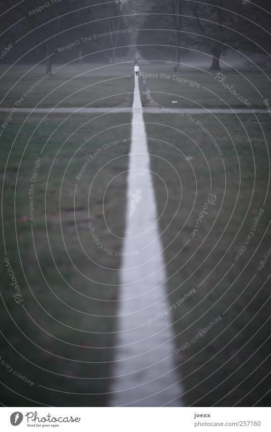 Human being Green White Tree Black Adults Autumn Cold Dark Landscape Lanes & trails Park Horizon Fear Going Fog