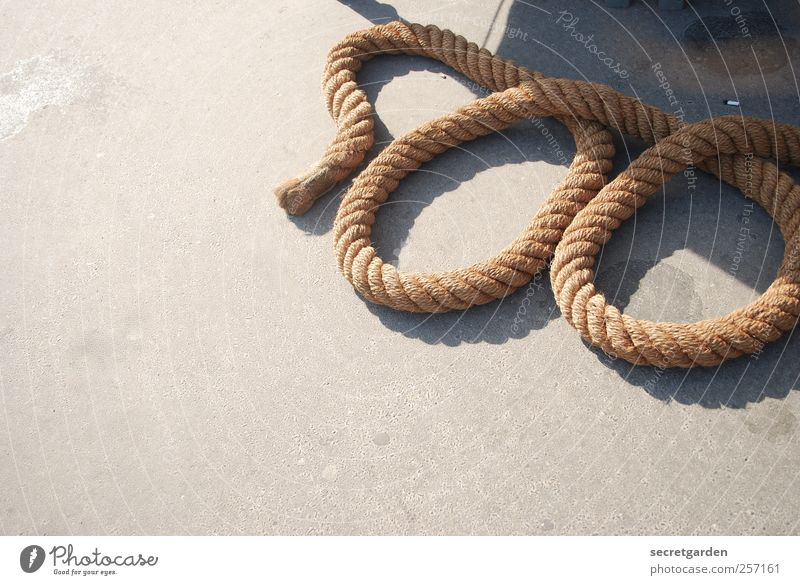 600 - Gordian knot Success Sailing Seaman Sailor Craft (trade) Rope Summer Beautiful weather Harbour Navigation Yacht harbour Concrete Sign Digits and numbers