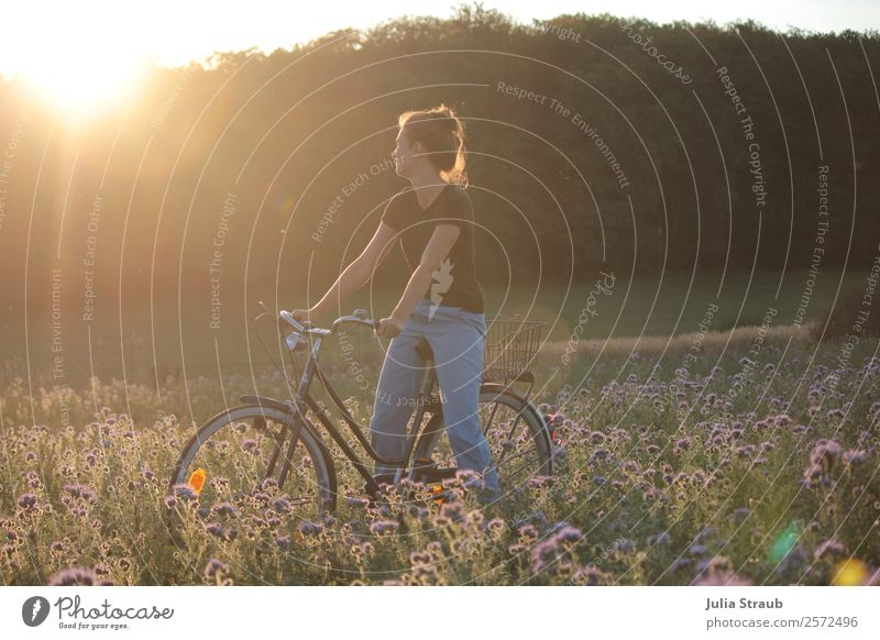 sunset woman bicycle Trip Cycling tour Woman Adults 1 Human being 30 - 45 years Summer Beautiful weather Flower Grass phazelie Field Forest T-shirt Jeans