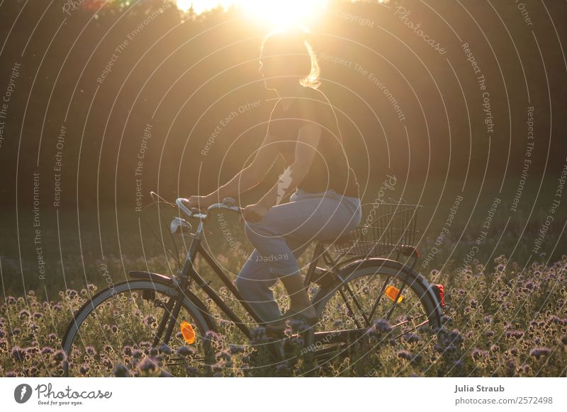 Bike Sunset Flowers Cycling Bicycle Feminine Woman Adults 1 Human being 30 - 45 years Nature Landscape Sunrise Sunlight Summer Beautiful weather Warmth Meadow