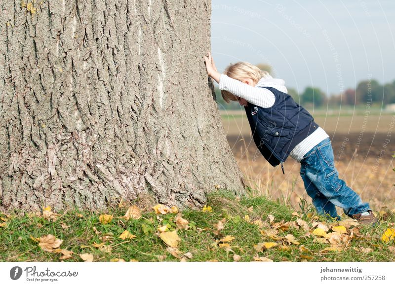 Human being Child Nature Tree Leaf Autumn Playing Boy (child) Small Infancy Power Blonde Masculine Large Happiness Toddler