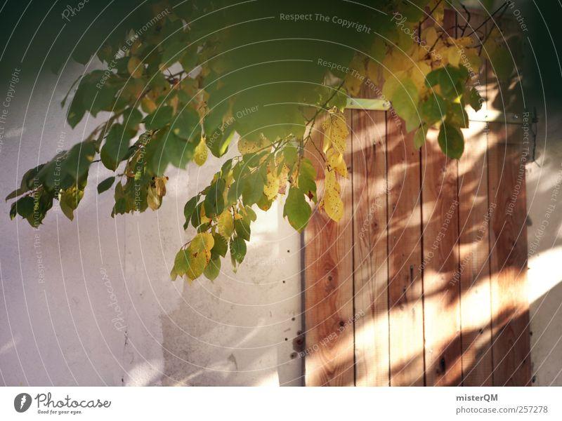 Scale door. Garden Door Gardenhouse Barn Feral Wooden door Mysterious Garden door Hide Autumn Green Autumnal colours Visual spectacle Colour photo