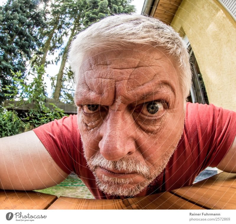 Portrait of a strange older man Human being Masculine Man Adults Male senior Head 1 Gray-haired Facial hair Observe Aggression Old Threat Emotions Moody