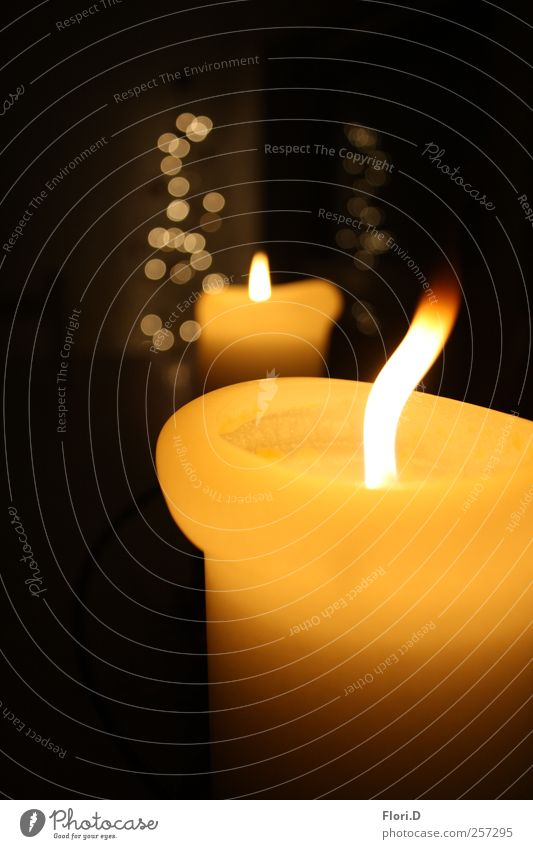 Black Calm Yellow Fire Candle Wellness Well-being Harmonious Senses Attentive