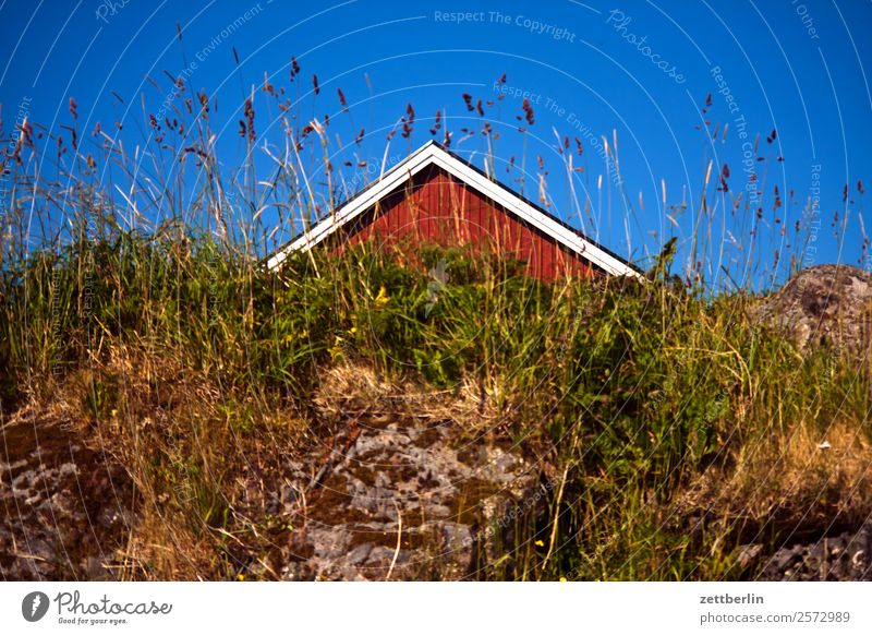 Sky Nature Vacation & Travel Heaven Landscape Red House (Residential Structure) Travel photography Wood Meadow Grass Copy Space Rock Roof Tradition Hut