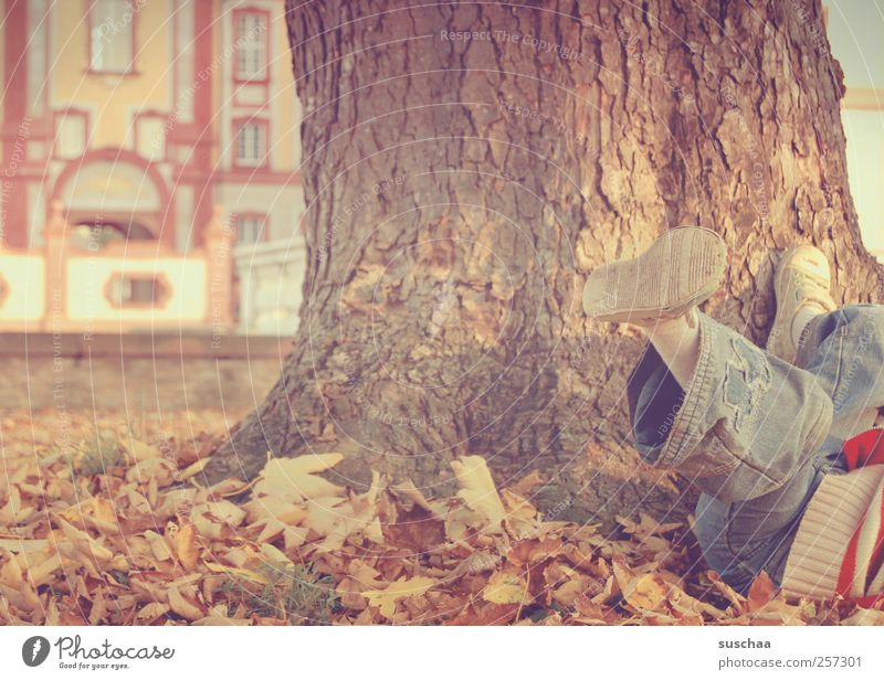 Human being Child Nature Tree Leaf Autumn Environment Playing Movement Legs Park Feet Infancy Leisure and hobbies Free Jeans