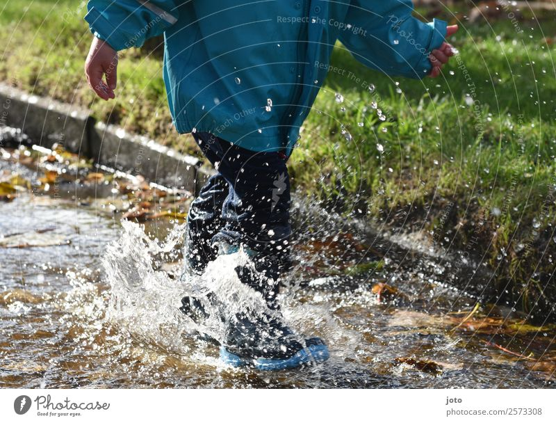 pond time Joy Trip Child Toddler Infancy 1 Human being 1 - 3 years Drops of water Autumn Leaf Rubber boots Movement Running Free Wet Joie de vivre (Vitality)
