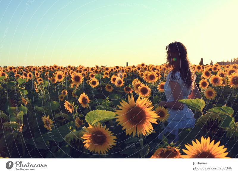 Human being Child Nature Youth (Young adults) Beautiful Vacation & Travel Sun Summer Flower Calm Yellow Relaxation Feminine Freedom Happy Moody