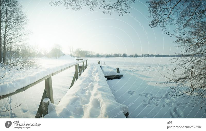 The footbridge Nature Landscape Sky Cloudless sky Horizon Sun Winter Beautiful weather Tree Lakeside Village House (Residential Structure) Lanes & trails Blue