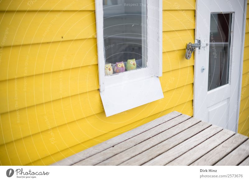 Beach house on the Danish island Ærø House (Residential Structure) Hut Wall (barrier) Wall (building) Facade Window Door Cute Yellow Owl birds Group of animals