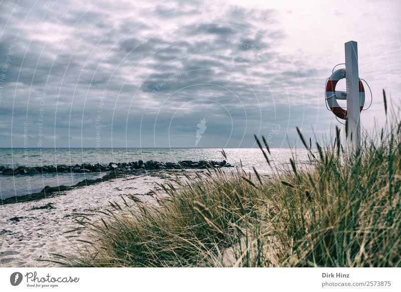 Beach with lifebelt near Marstal / Denmark Vacation & Travel Tourism Trip Far-off places Freedom Summer Summer vacation Ocean Island Waves Clouds Grass