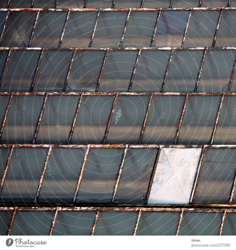 indoor soccer Factory Architecture Factory hall Roof Glas facade Glass roof Pane Old Broken Uniqueness Whimsical Town Metalware Rod Iron rod Construction