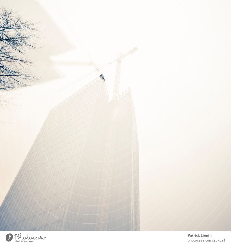 In the big city Environment Nature Weather Bad weather Fog Town High-rise Bank building Manmade structures Building Architecture Tall Esthetic Trade Communicate