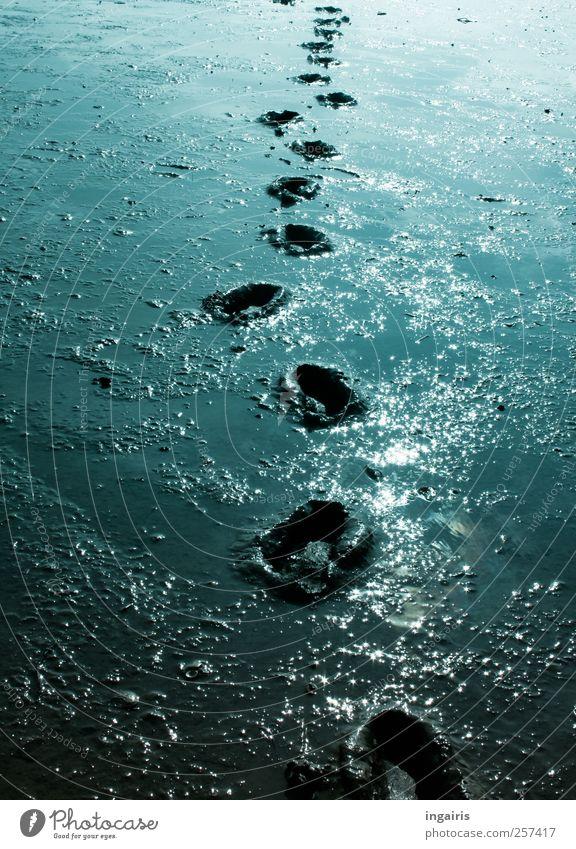 mudflat walk Vacation & Travel Trip Beach Ocean Hiking Walk along the tideland Nature Earth Water Coast North Sea Footprint Walking Infinity Blue Black White