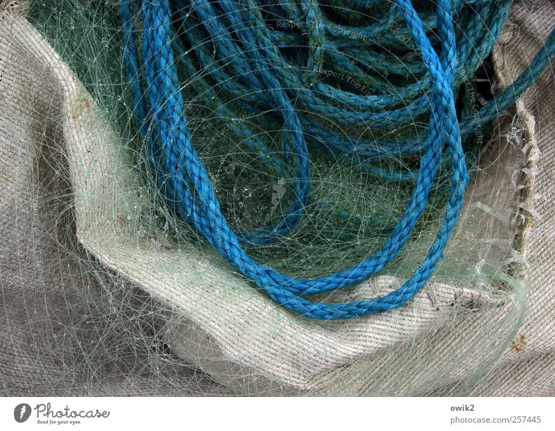 fishermans friend Profession Workplace Fishery Authentic Wet Blue Gray Green White Rope Net Fine Firm Containers and vessels Drops of water Colour photo